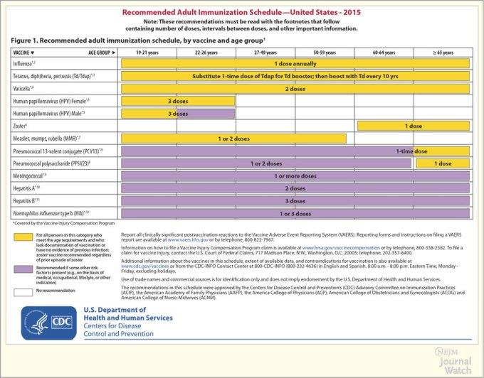 immunisation schedule qld 2017 pdf