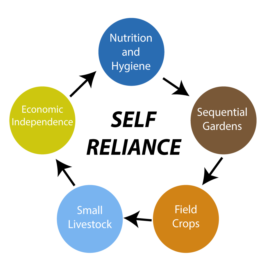 lds self reliance manual