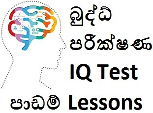 intelligence test questions and answers pdf