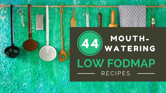 low fodmap recipe book pdf